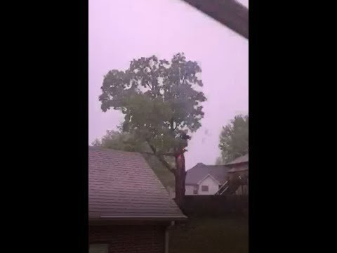 Tree Catches Fire in LR Storm