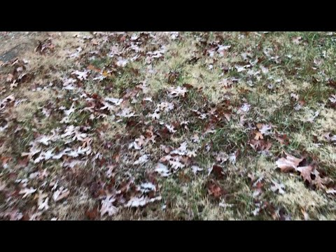 VIDEO: Sleet and Snow