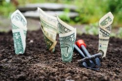 Equitable Economic Development Part 2: What Works For Economic Growth and Equity