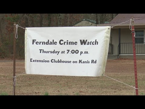 Watch: Ferndale neighborhood takes security into their own hands