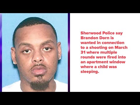 Watch: Sherwood Police search for man accused of shooting into window where child was sleeping