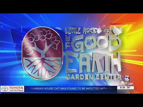 Watch: Fox 16 Good Day: Good Earth Garden Center