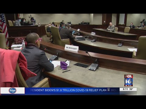 Watch: Black Caucus chairman disputes bill banning 1619 project