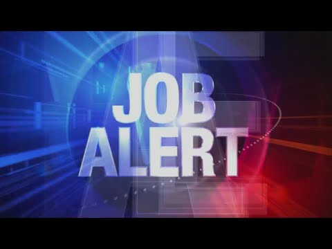 Watch: Job Alert: Openings in accounting, business, transportation, medical and more