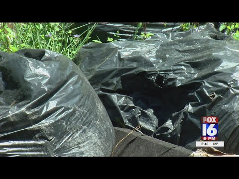 Watch: City leaders try to take out illegal dumping problem in Pine Bluff