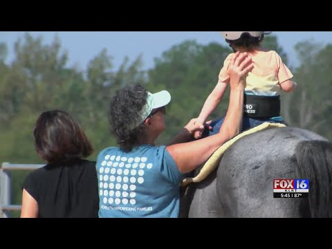 Watch: Garland County therapy harnesses horses with healing for children with special needs